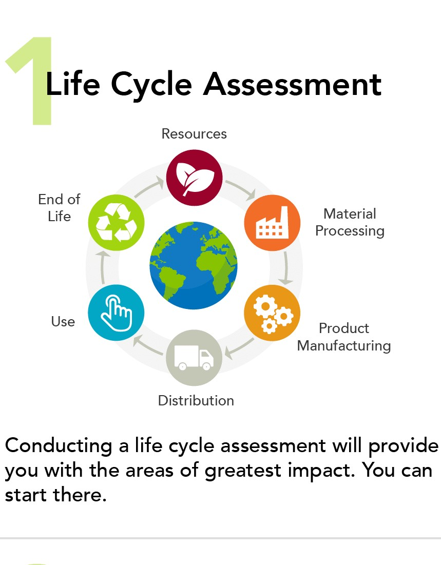 Shows the Life Cycle Analysis Diagram